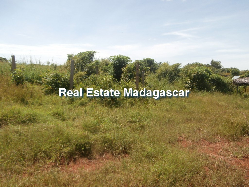 land-for-sale-belobaka-mahajanga-4.jpg