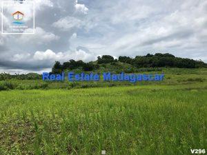 orangea-nosybe-land-sale-3.jpg