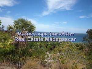 beautiful-land-sale-mahajanga-1.jpg