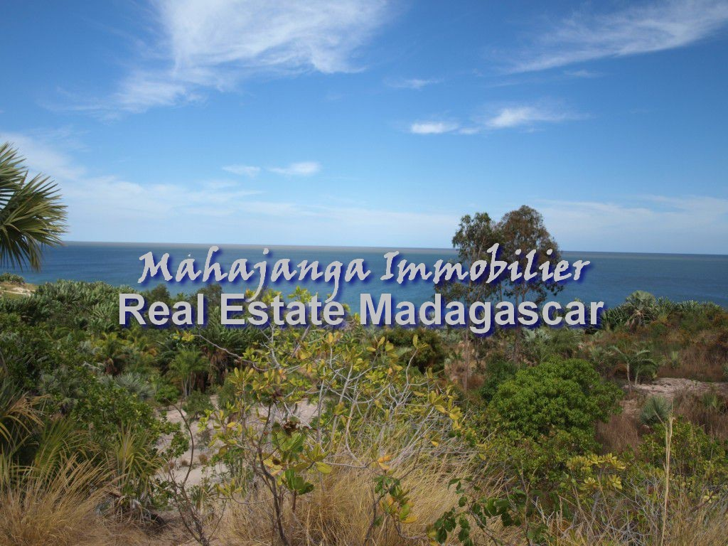 beautiful-land-sale-mahajanga-2.jpg