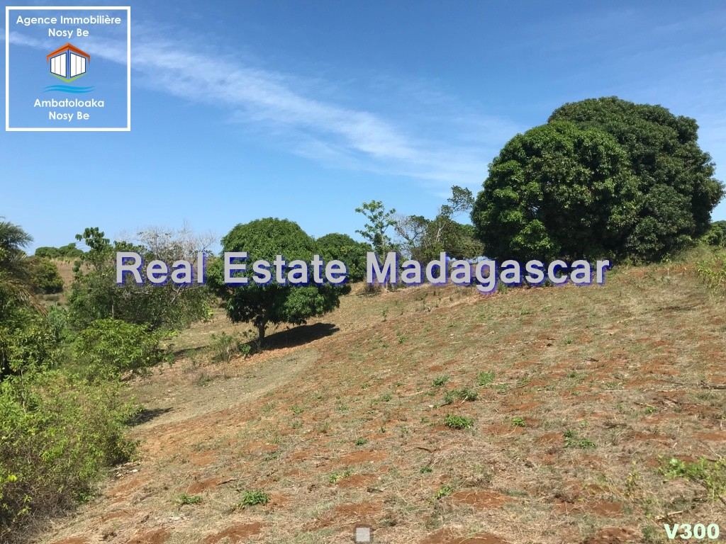 land-for-sale-district-belaza-1.jpg