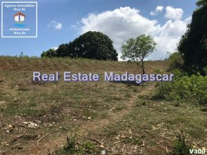 land-for-sale-district-belaza-4.jpg