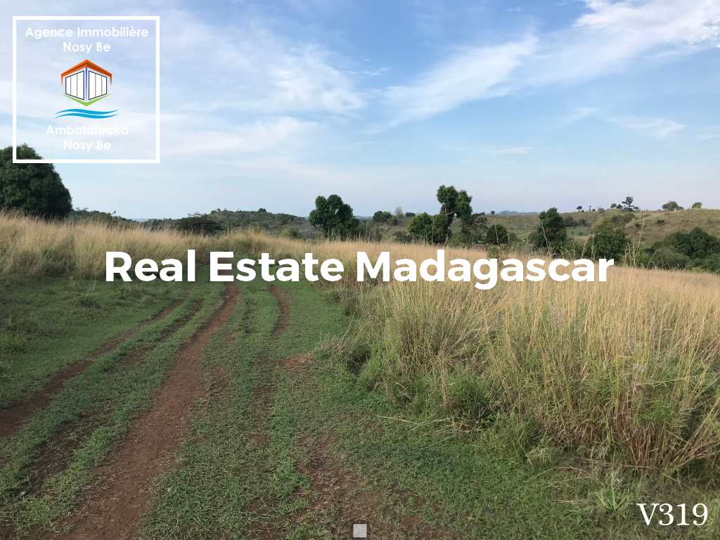 land-for-sale-belaza-sakatia-nosybe-1.jpg