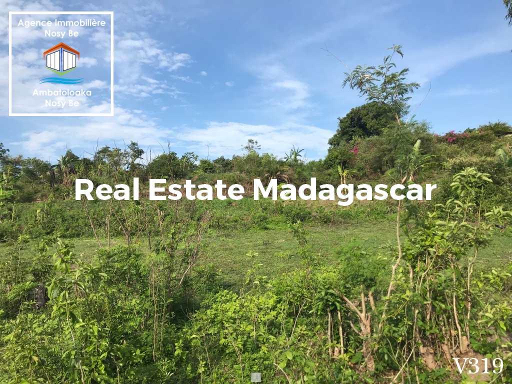 land-for-sale-belaza-sakatia-nosybe-4.jpg