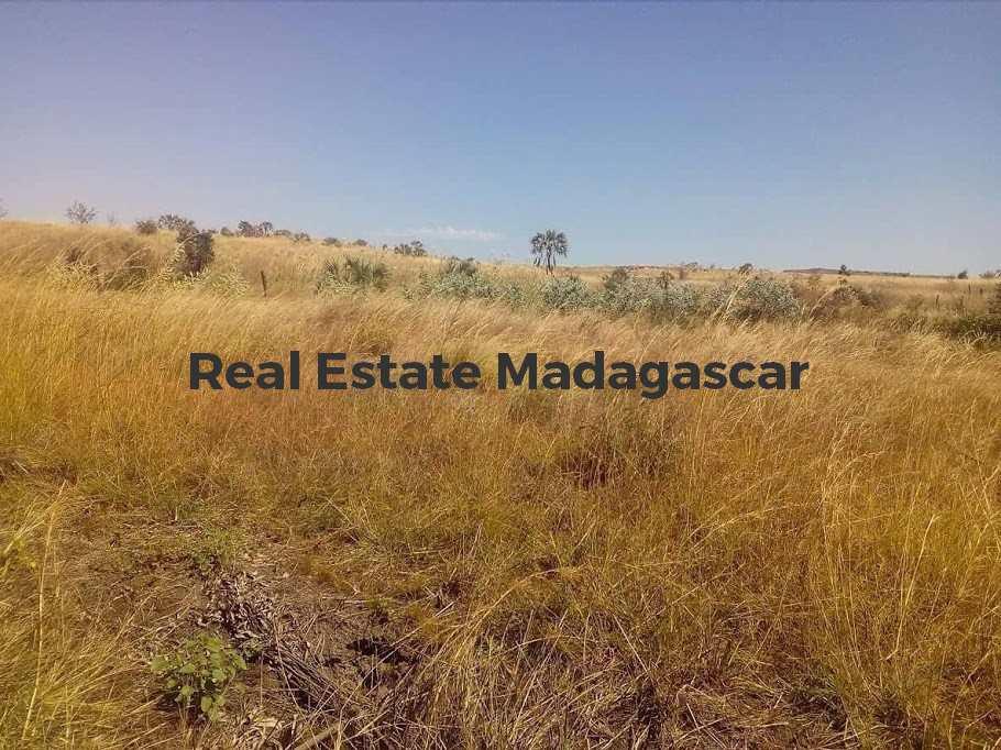 sale-agricultural-land-mahajanga-1.jpg
