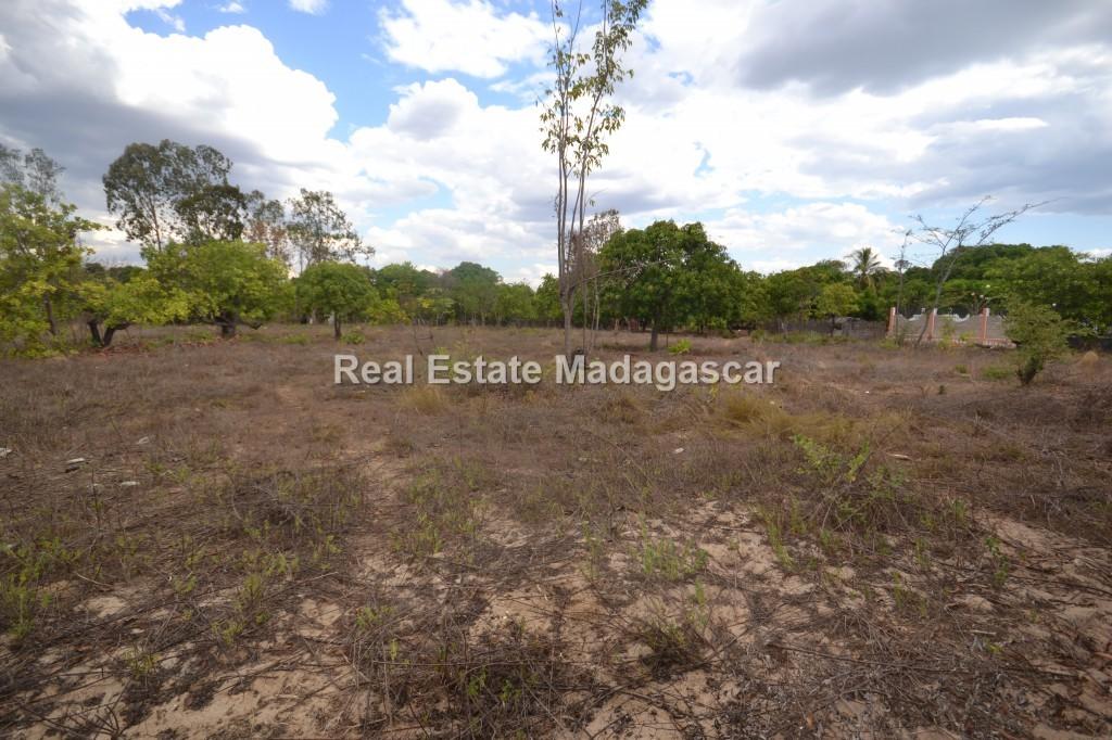 amborovy-land-sale-mahajanga-22.jpg